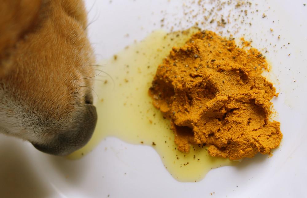 Gizzls CBD treats for pets