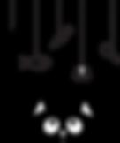 Black cat_homepage.png