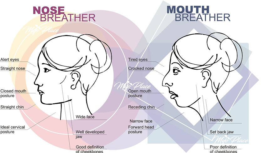nose-breather_vs_mouth-breather_1.jpg
