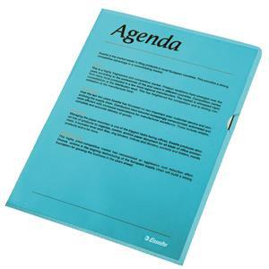 Esselte (A4) Copy-safe Folder Plastic Cut Flush Blue