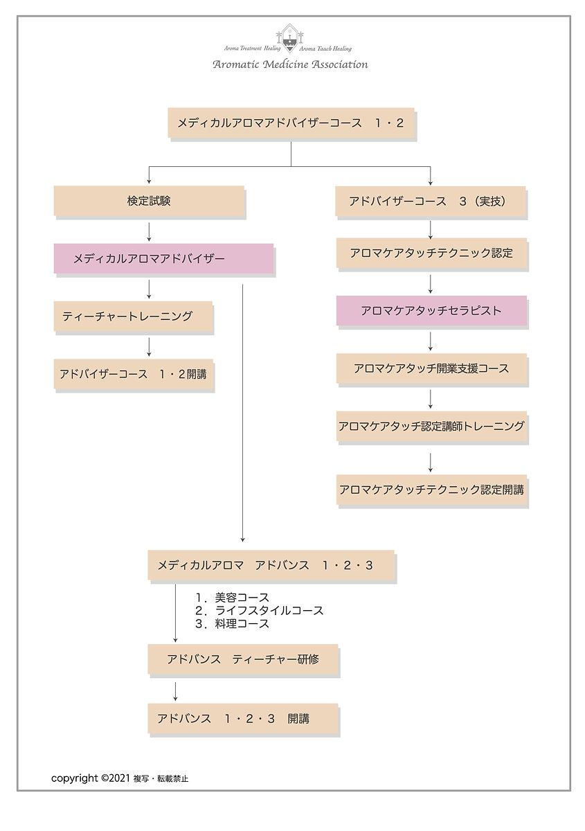 協会チャート図のコピー.jpg