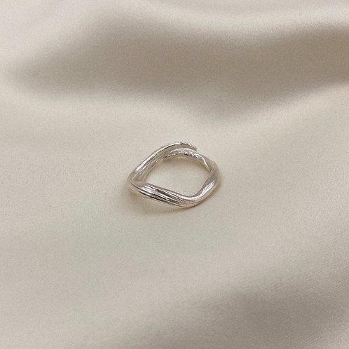 Agda Ring