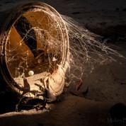 Bucket of Spiders (digital).jpg