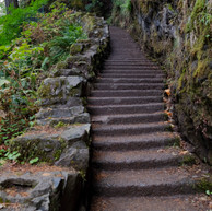 Stairs at Silver Falls.digital.jpg