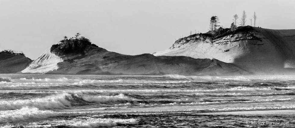 Oregon Dunes.digital.jpg