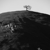 Shadow Land (digital).jpg