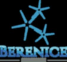 Logo berenice png.png
