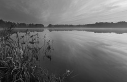 LakeSceneB+W