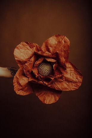 Fleur Géante taille M