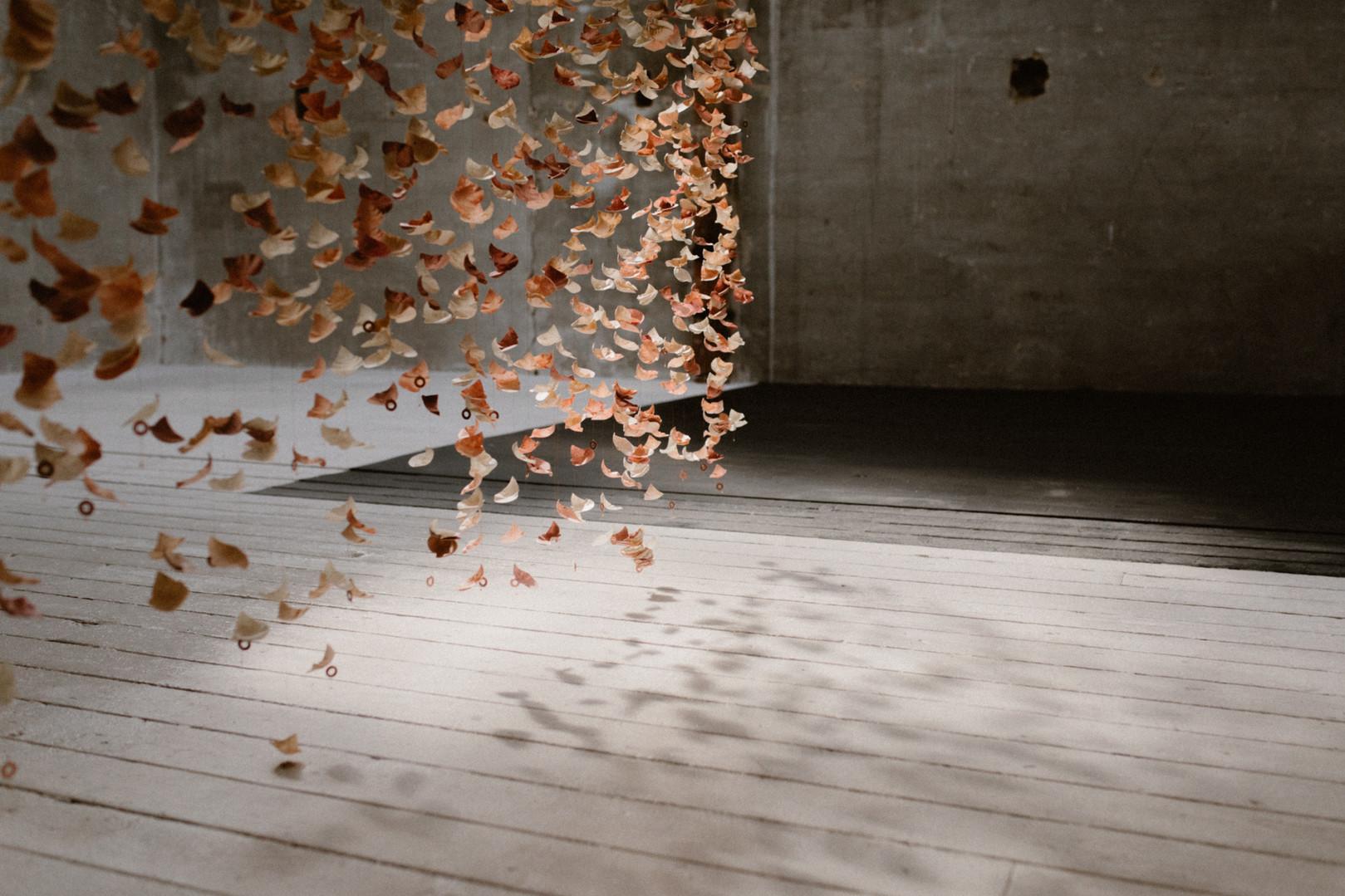 shooting de Collection Atelier Swan