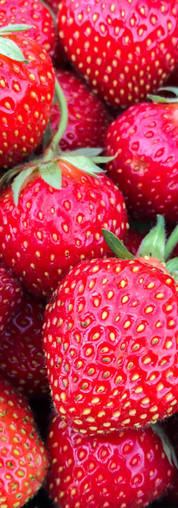 beauty-strawberries-sq.jpg