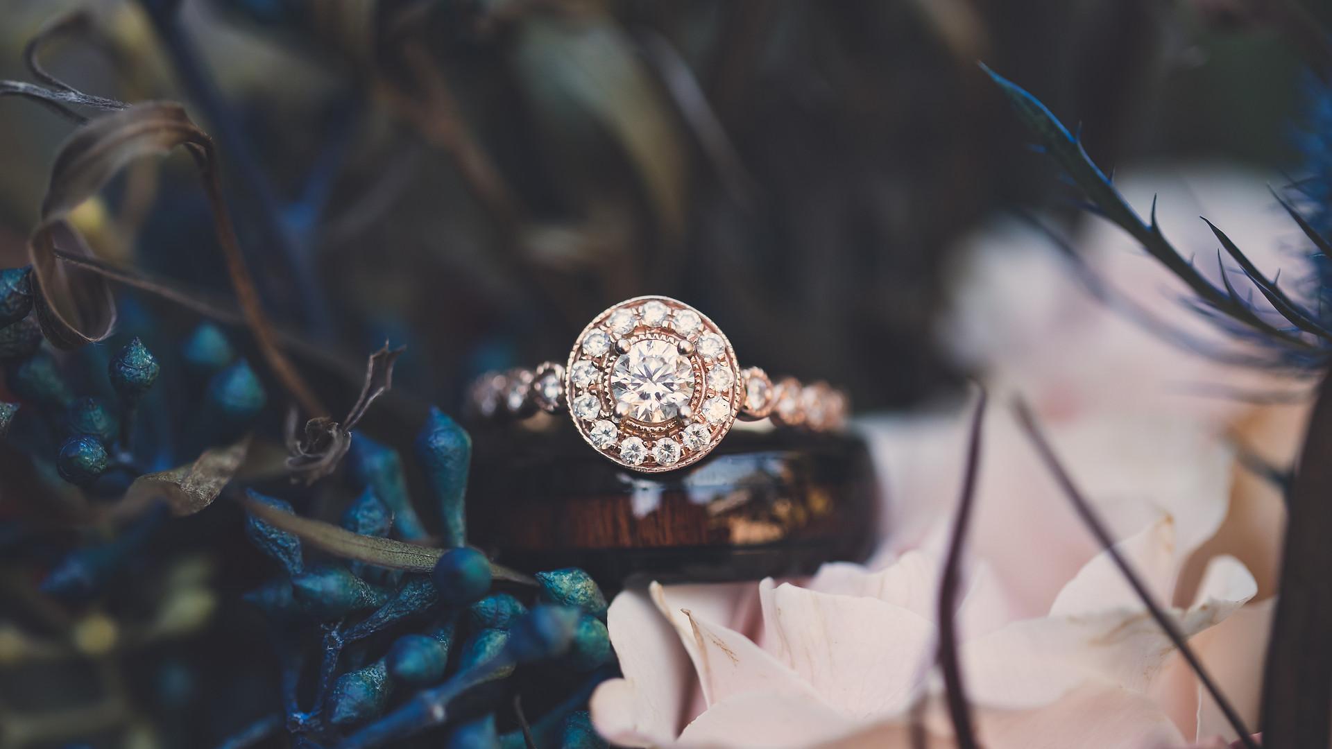 Kari Bendig Photography Details Wedding