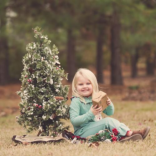 Raelyn Christmas Mini's
