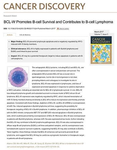 BCLW CD.jpg
