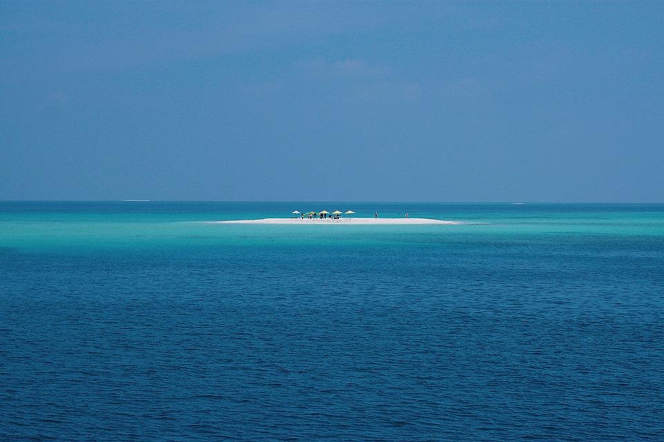 Blue - oasis island.jpg