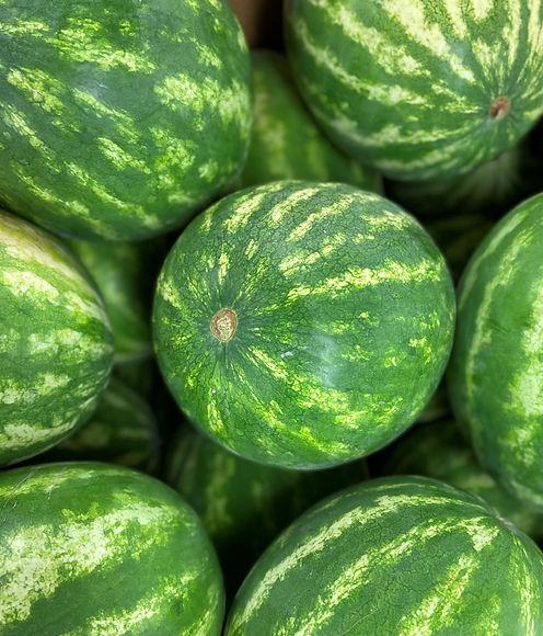 Watermelon Pic.jpg
