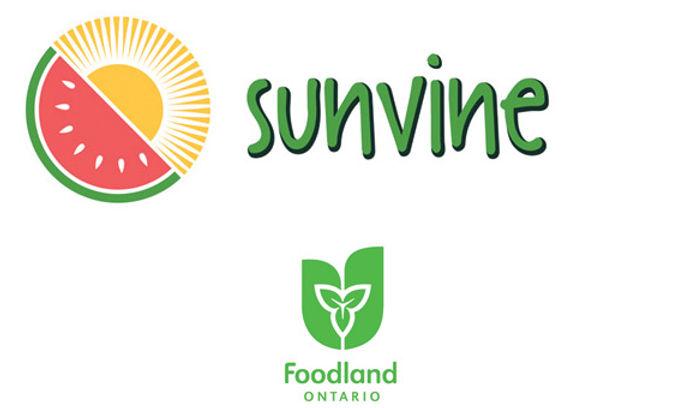 Sunvine-ONTFDLD.jpg
