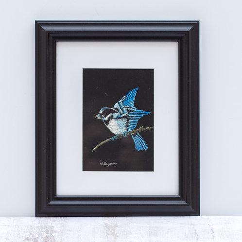 Bluebird Scratch Art