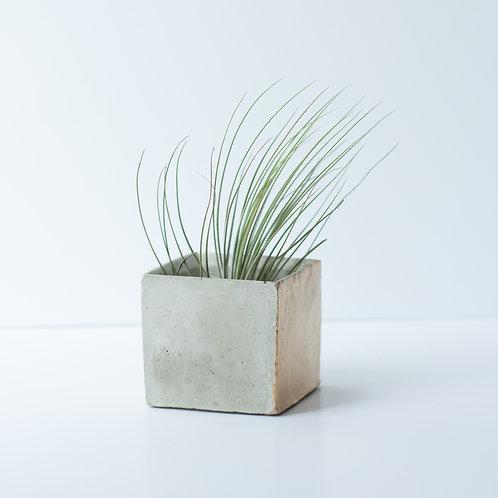 Geoform Concrete Containers