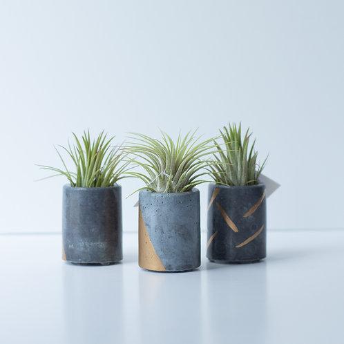 Geoform Concrete Planters, Abigail