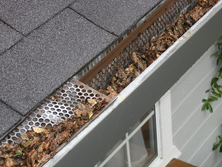 Fall Maintenance: Protect Your Home This Winter