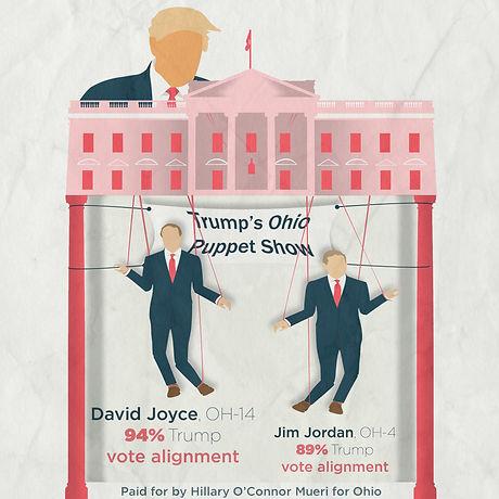 Joyce Trump Voting Record.jpg