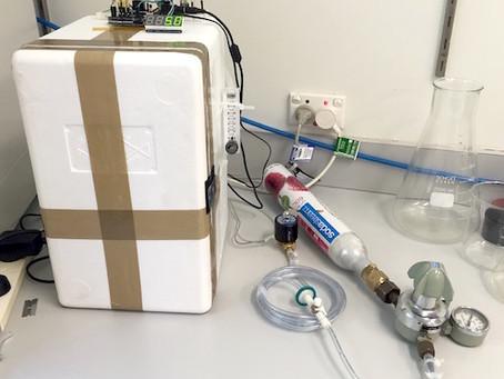 DIY CO2 Incubator Bioreactor for Mammalian Cell Culture