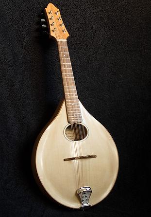 mandolin front.jpg