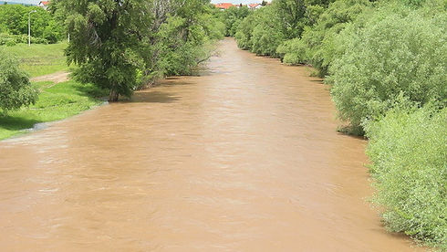 Muddy River in the Green preview image.j