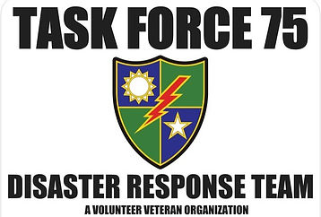 Task%20Force%2075%20Logo%201_edited.jpg
