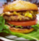 Our Chicken Club Special plus Turmeric S