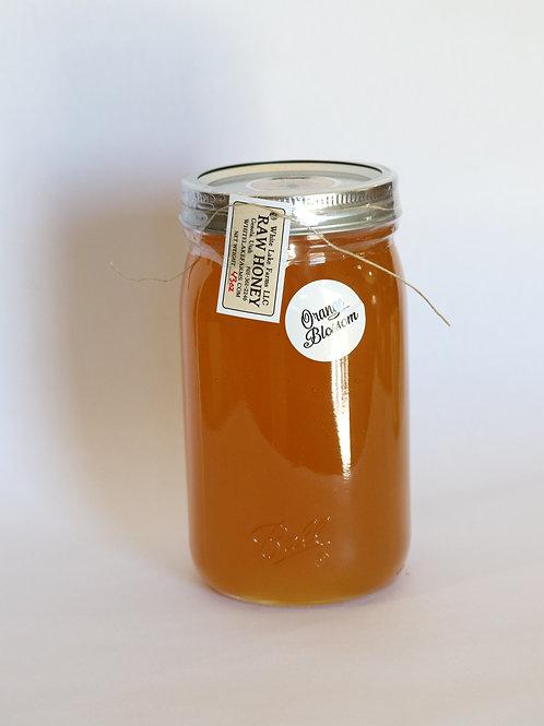 43oz Orange Blossom Honey