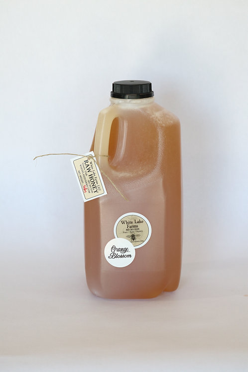 5 lbs Jug Orange Blossom Honey