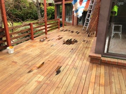 before decking photo Canberra
