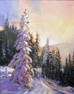 Winter Backwoods