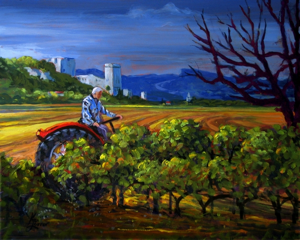 tending the grapes
