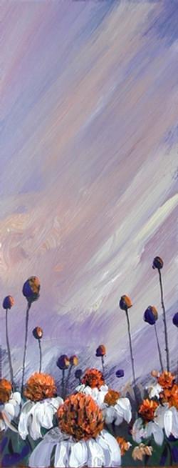 echinasia