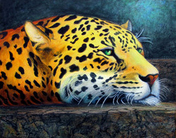 Leopards Den