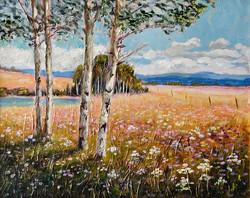 aspen meadow