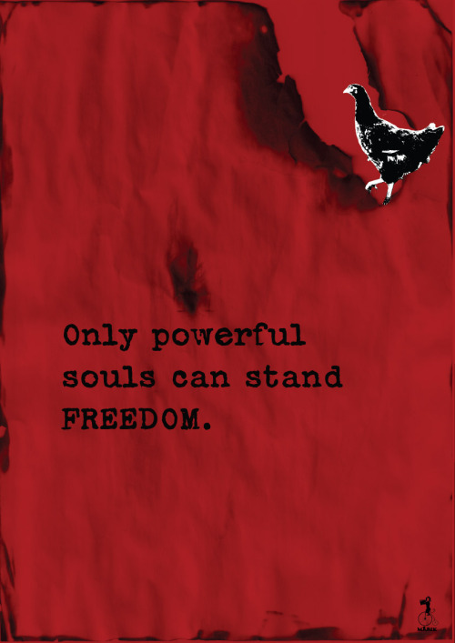 ...stand for freedom
