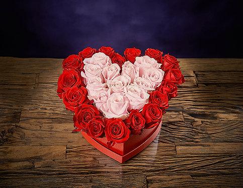 HEART IN MY HEART THE BOX
