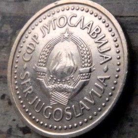 50 Пара, 1983 года, СФР Югославия, Монета, Монеты, 50 Para1983, SFR Jugoslavija, СФР Jугославиjа, Coat of Arms,Герб на монете.