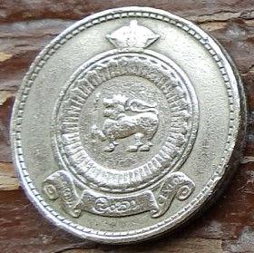 50 Центов, 1963 года,Цейлон, Монета, Монеты, 50 FiftyCents 1963, Ceylon,Ornament,Орнамент на монете,Emblem of Ceylon,Герб Цейлонана монете.