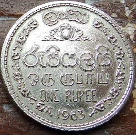 1 Рупия, 1963 года,Цейлон, Монета, Монеты, 1One Rupee1963, Ceylon,Ornament,Орнамент на монете,Emblem of Ceylon,Герб Цейлонана монете.
