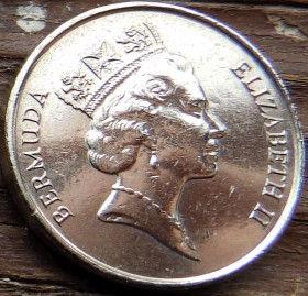 5 Центов, 1996года, Бермудские Острова, Монета, Монеты, 5 Five Cents 1996, Bermuda,Fauna,Fish,Queen angelfish,Фауна, Рыба,Ангел-королевана монете,Королева Elizabeth II, Елизавета IIна монете, Третий портрет королевы.