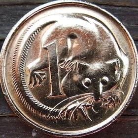 1 Цент, 1980 года,Австралия, Монета, Монеты, 1Cent 1980, Australia,Dwarf flying couscous,Карликовый летучий кускус на монете, Королева Elizabeth II, Елизавета IIна монете, Второй портрет королевы.