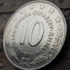 10 Динаров, 1978 года, СФР Югославия, Монета, Монеты, 10 Dinara 1978, SFR Jugoslavija, СФР Jугославиjа,Рослинний орнамент,Растительный орнамент,Floral ornament, Stars,Звезды на монете,Coat of Arms,Герб на монете.