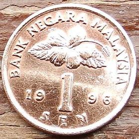 1 Сен, 1996 года, Малайзия, Монета, Монеты, 1 Sen 1996, Malaysia, Квітка Гібіск, Flower Hibiscus, Цветок Гибискус на монете,National drum, Национальный барабан на монете.