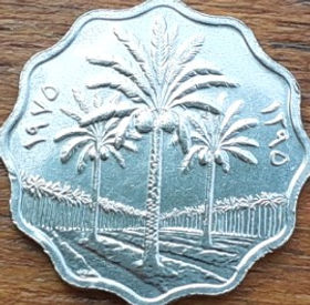 5 Филсов, 1975 года, Ирак, Монета, Монеты, 5 Fils1975, Irak,Spikelet, Leaf of a tree,Колосок, Листок деревана монете, Flora, Palm, Флора, Пальма на монете.