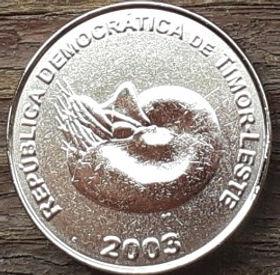 1 Сентаво, 2003 года, Восточный Тимор, Монета, Монеты, 1 Centavo 2003, Republica Democratica De Timor-Leste, Ornament, Орнамент на монете, Fauna, Mollusk Nautilus, Фауна, Моллюск Наутилусна монете.